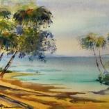 rainbow-palms