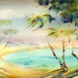 seven-lanai-palms