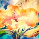 hibiscus-in-the-clouds