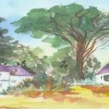 wailuku-estate