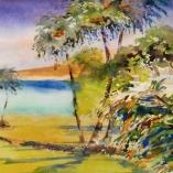 shimmering-palms