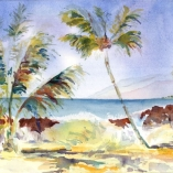 island-surf